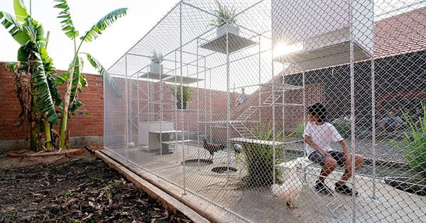 Cách làm chuồng gà nuôi nhốt bằng lưới sắt B40. Đây là chuồng vận động với kích thước lớn.