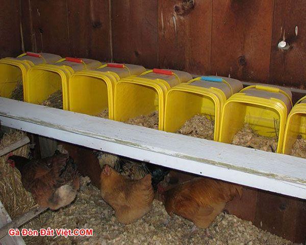 Chuồng gà đẻ trứng đơn giản tự làm tại nhà.