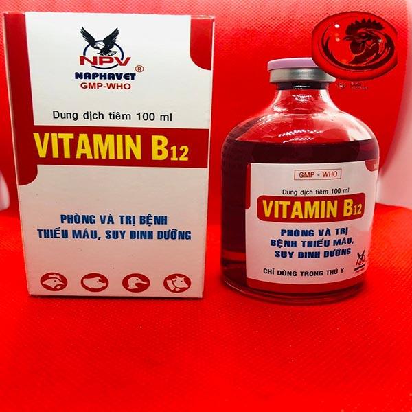 Vitamin tổng hợp cho gà với Vitamin B12